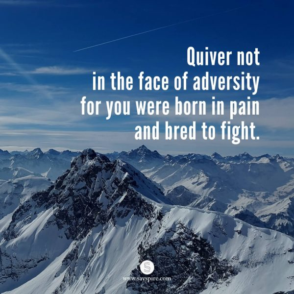 "Quotes about Life Struggles and Overcoming Them, ""Quiver not in the face of adversity for you were born in pain and bred to fight."""