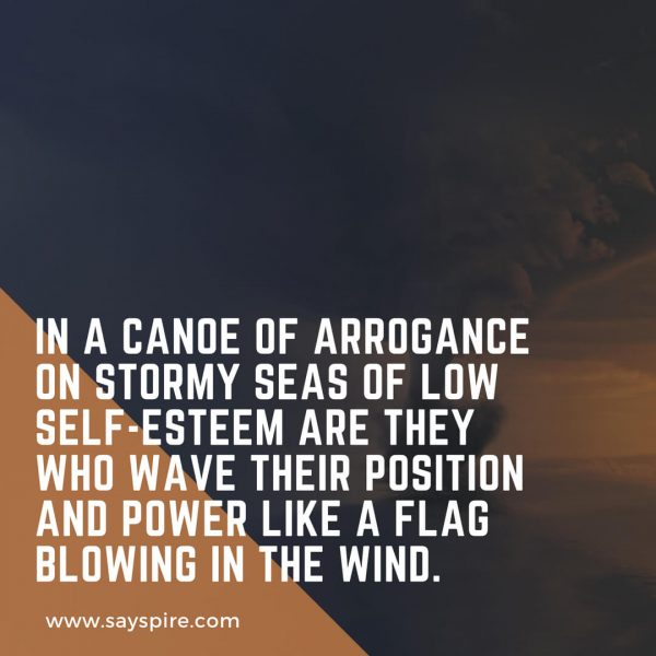 """In a canoe of arrogance on stormy seas of low self-esteem are they who wave their position and power like a flag blowing in the wind."" Joshua Cintron"